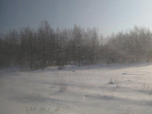 снежная поземка за окном вагона