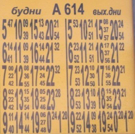 Москва, Митино, Рождествено, Видовдан