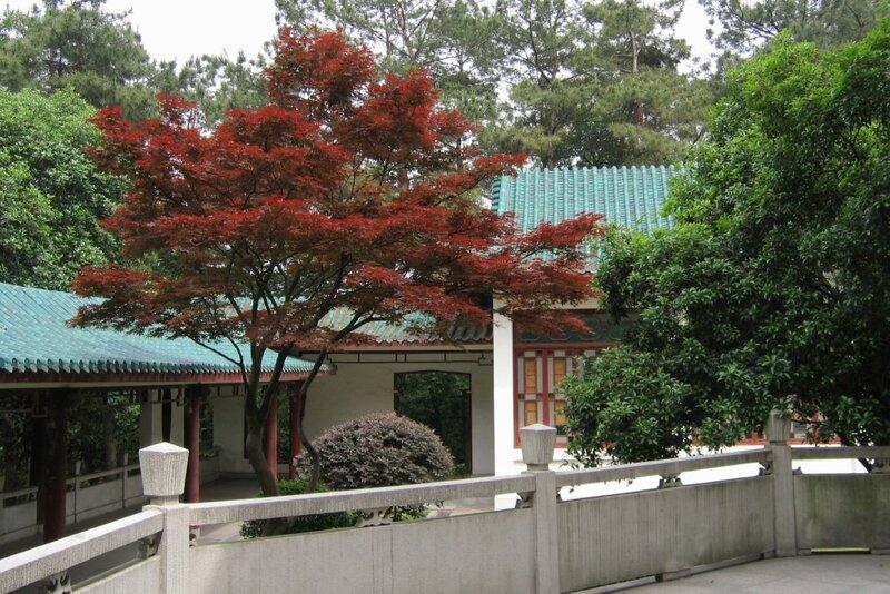 Уханьский ботанический сад, Ухань