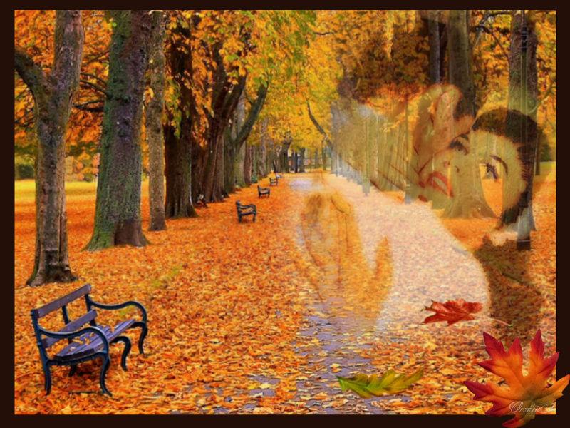 Осень пришла....jpg
