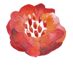 3_Floral (90).png