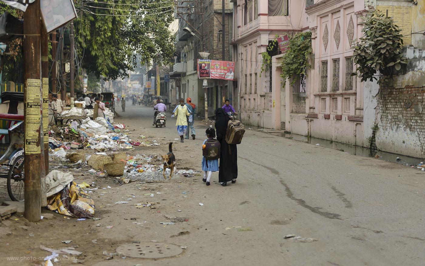 Фото 10. Отзыв о путешествии по Индии. Любовь к мусору воспитывается у индийских детей, если не с молоком матери, то со школьной скамьи. 1/640, -0.33, 2.83, 250, 50.