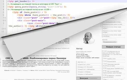 php стриптиз на блоге Белая Шляпа