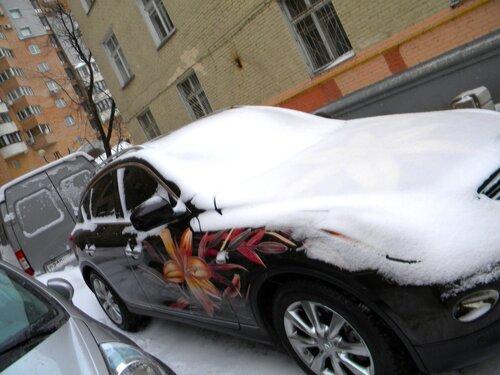 Лилии под снегом