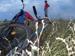 Велосипед (4)