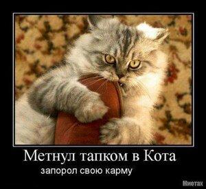 https://img-fotki.yandex.ru/get/3810/194408087.12/0_10140e_e3fa99b8_M.jpg