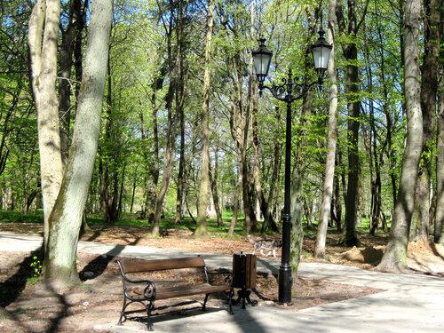 В весеннем парке... 2