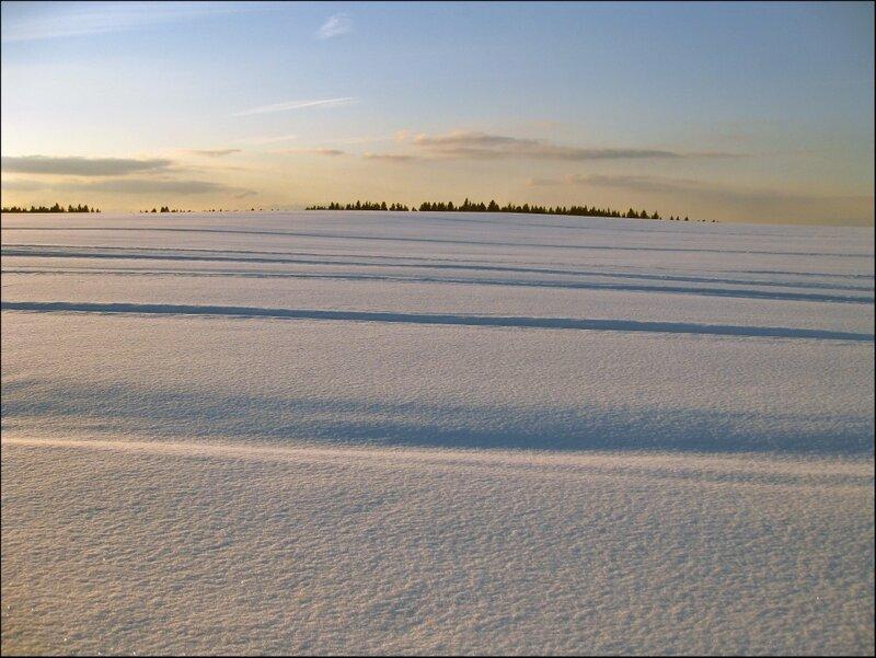 Зимнее поле. Район Клинско-Дмитровской гряды