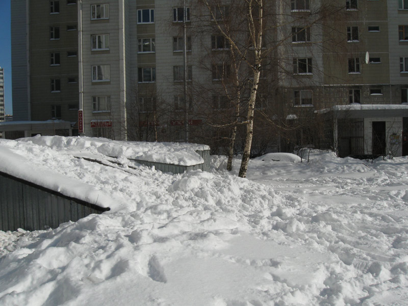 Белым снегом всю округу замело