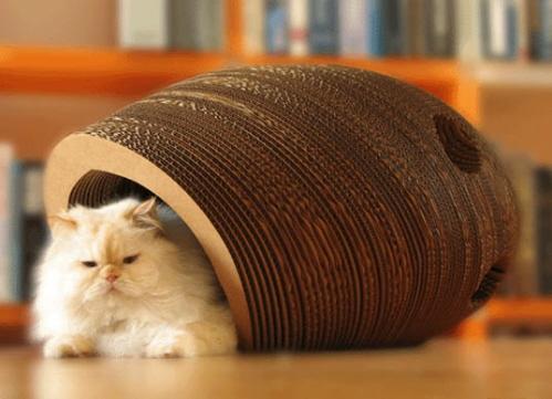Кошки и мебель