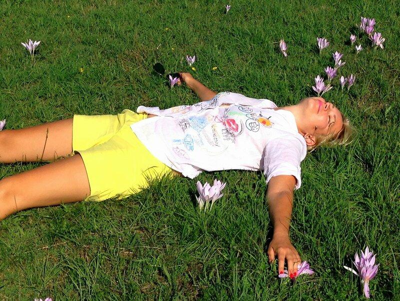 крокусы в Черногории летом