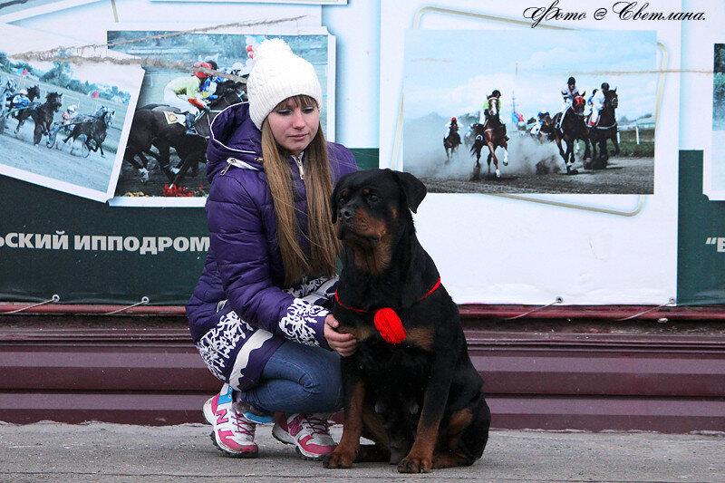 https://img-fotki.yandex.ru/get/3811/225487091.8f/0_12095e_2528f968_XL.jpg