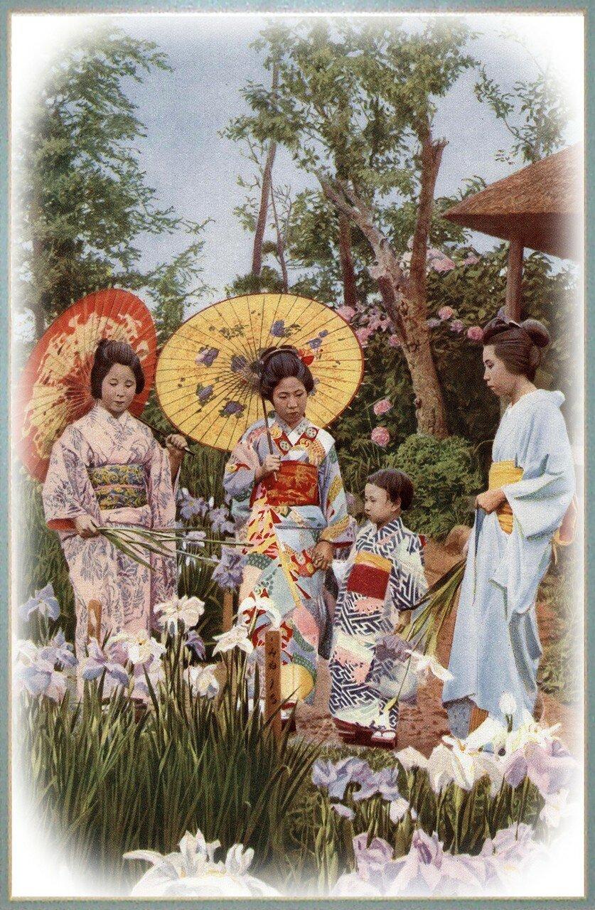 Гейши посещают сад