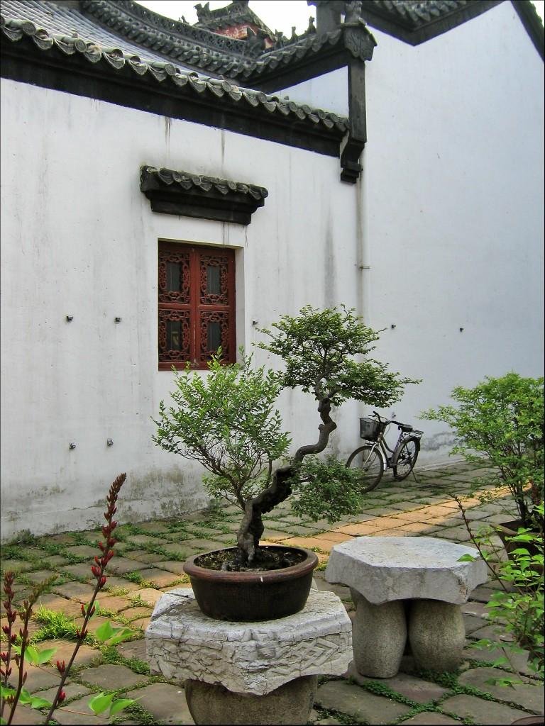 Карликовые деревца, монастырь Гуйюань, Ухань