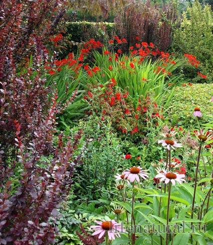 огород сад Шато Берегард Франция сады мира