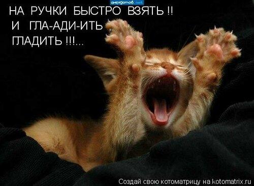 0_28a0a_ffdae89c_L.jpg