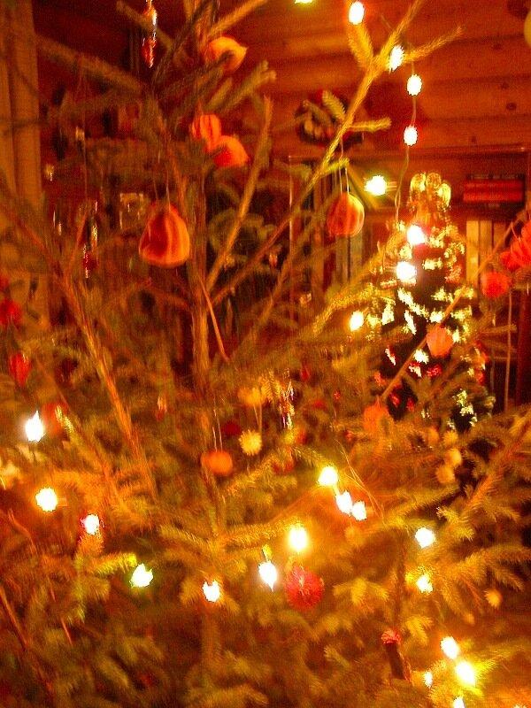 Зима,с.Остров,подворье,праздники,домашняя ёлочка