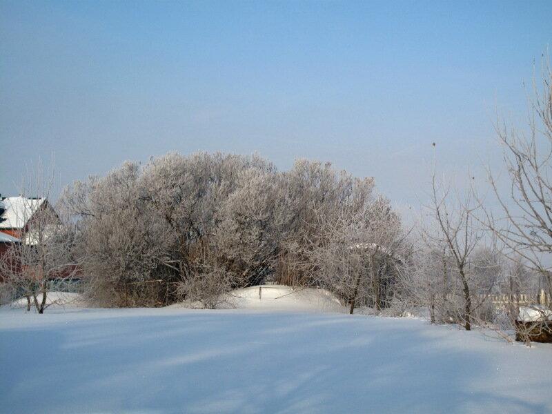 Зима,с.Остров,иней