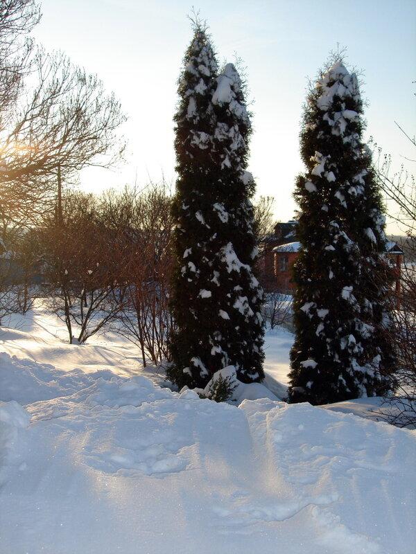 Зима,с.Остров,февраль