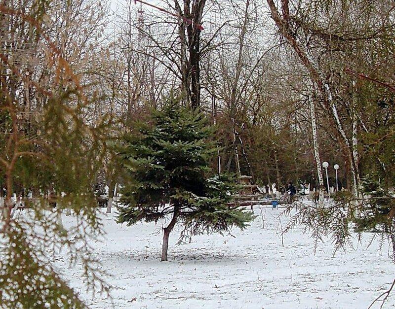 Мартовский снег (22)