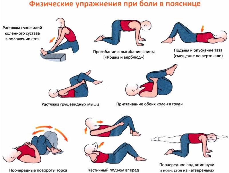 Для наглядности представляем две схемы по укреплению мышц верхней части спины (1) и мышц поясницы (2) .
