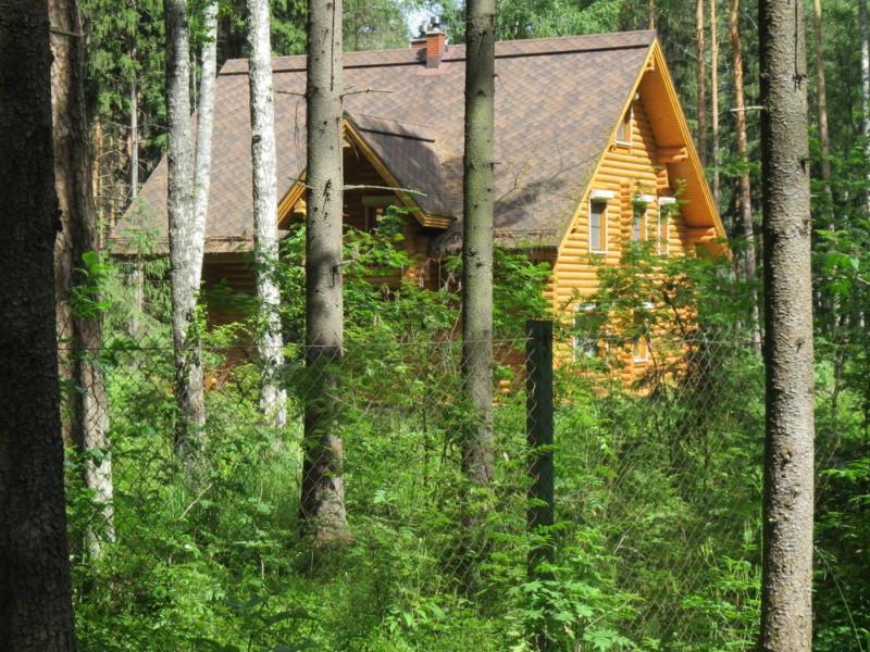 Отвод на земли лесного фонда