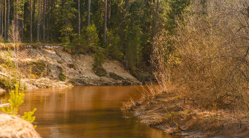 У реки Боровицы