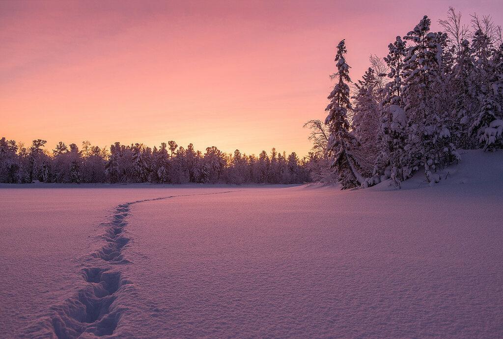Морозное утро 7