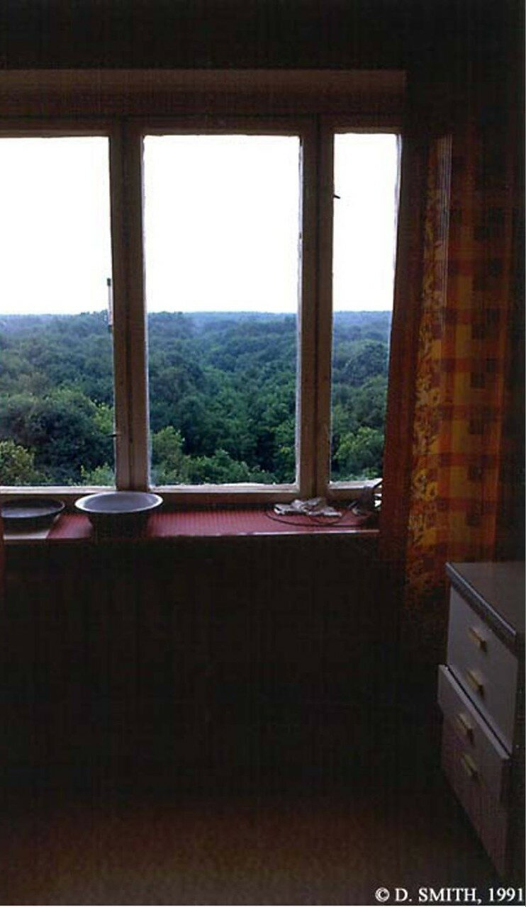 Вид на Парк «Сокольники» из окна квартиры