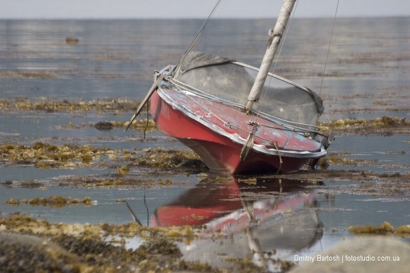 Лодка во время отлива моря. Фотограф Дмитрий Бартош