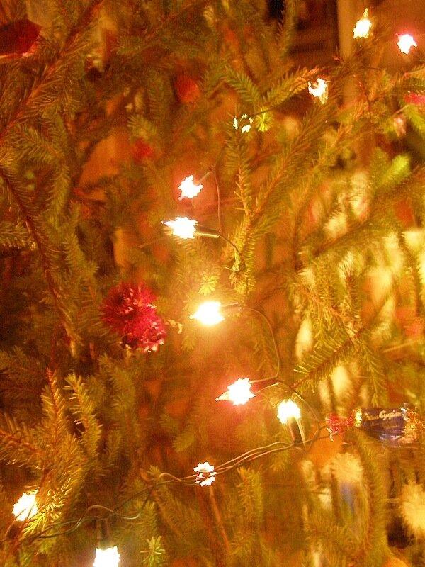 Зима,с.Остров,подворье,праздники,огоньки