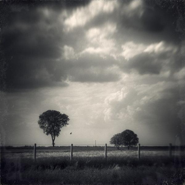 Мрачное фото от Uzengia Aleksandar Nedic