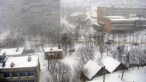 Синоптики: в пятницу в Приморье ожидаются дожди, снег и гололед