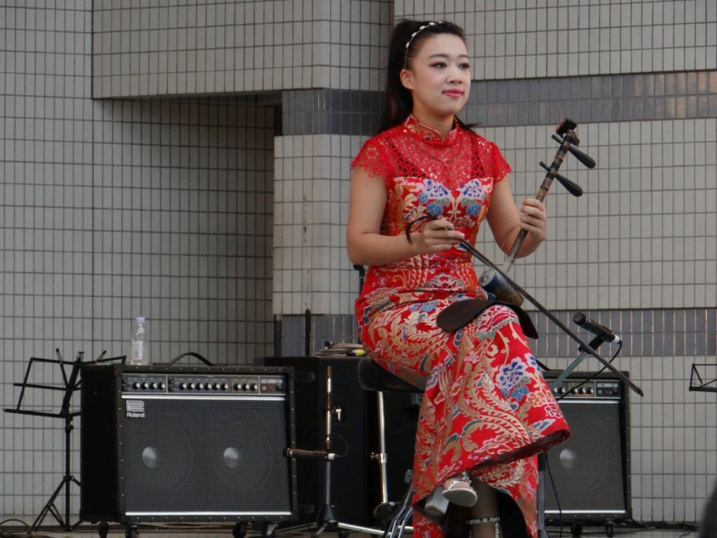 Путешествуя по Японии. Фестиваль