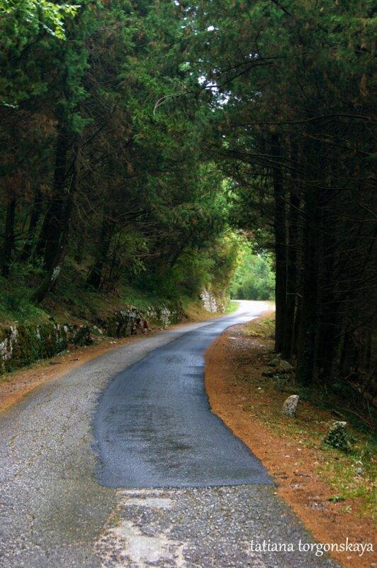 Дорога к крепости Горажда