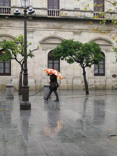 Севильские зонтики-1