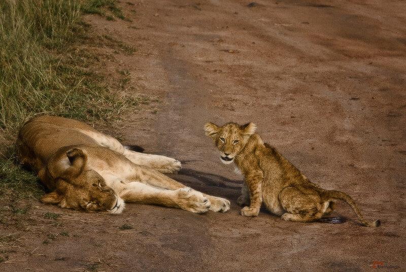 Пока мама спит