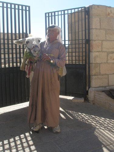 Араб с белым осликом