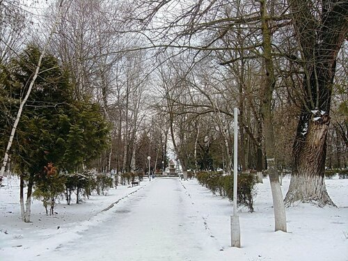 Мартовский снег (20)