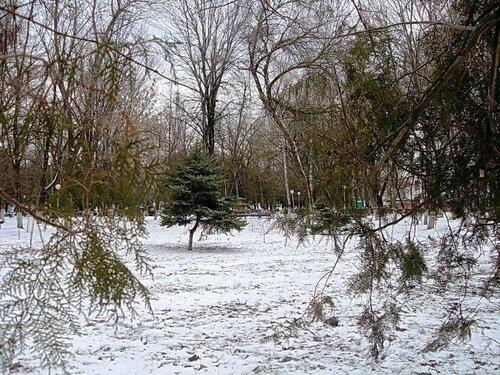Мартовский снег (21)