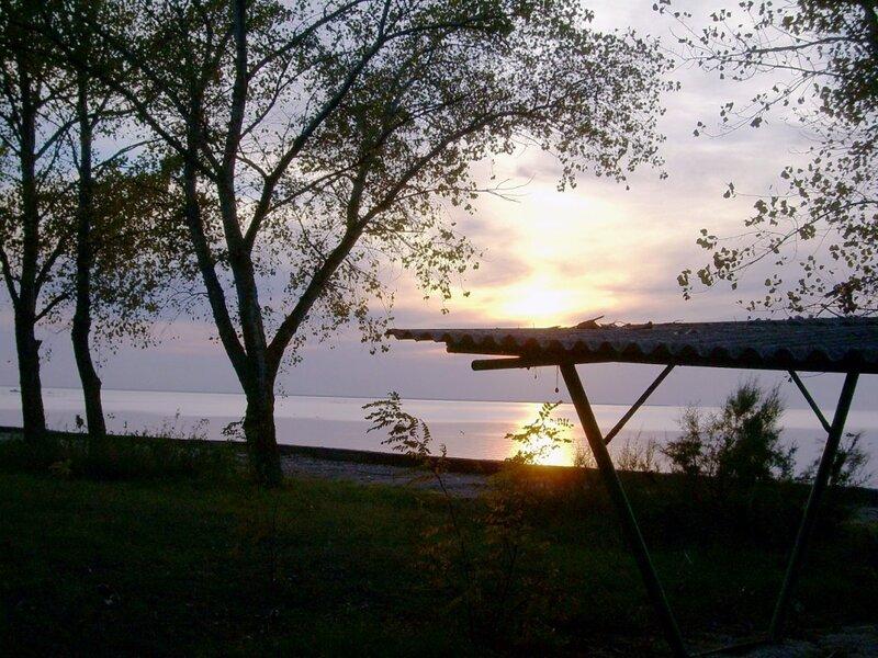 004. Фотографии Светланы Левады (8)