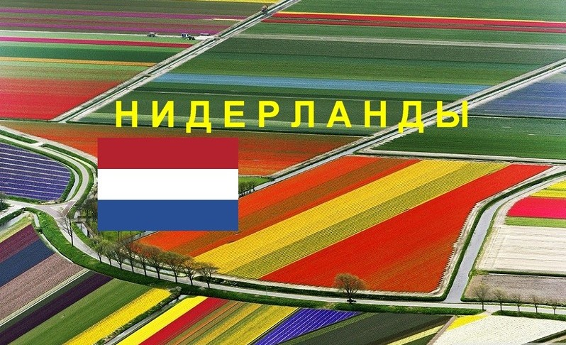 Обзорный пост по Нидерландам
