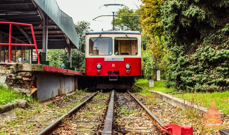 Остановка зубчатого трамвая в Будапеште