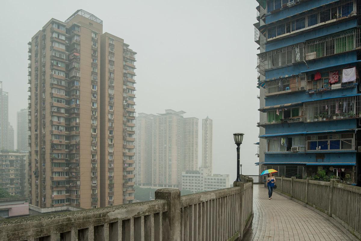 Жаркий влажный климат в городе стал причиной того, что среди бетонных зданий стали появляться зелены