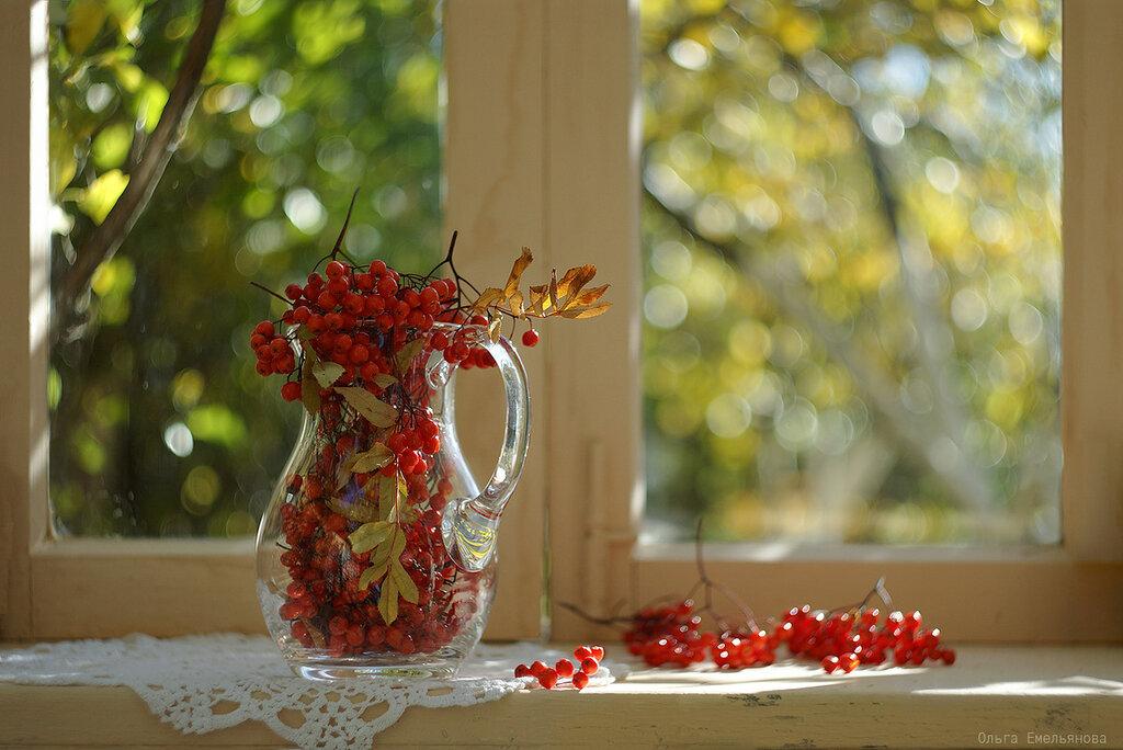 Солнечный октябрь
