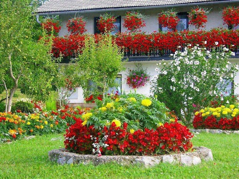 Как украсить палисадник своими руками цветами