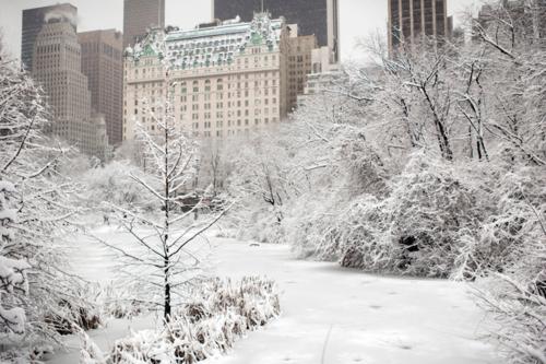 Центральный парк Нью-Йорка после снегопадов