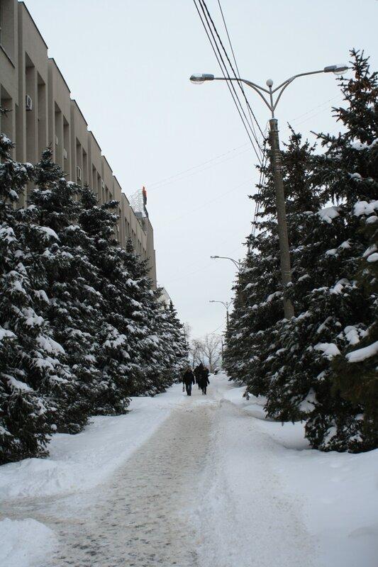 Прогулка после снегопада 092.JPG