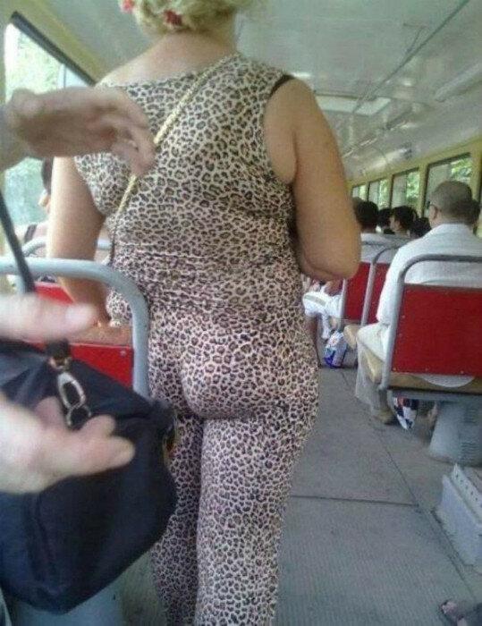 Дикий леопард.
