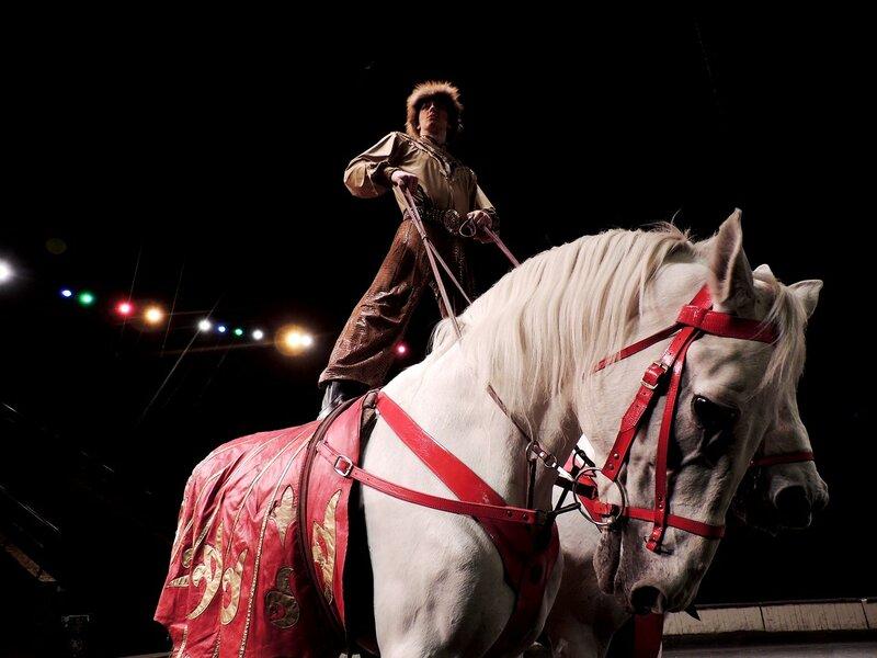Нижегородский цирк